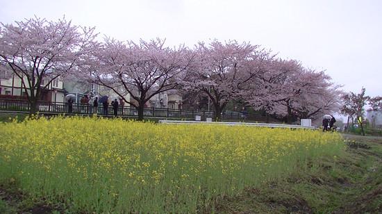 Pic_0034